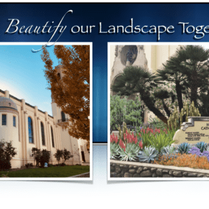Landscape Revisioning Project