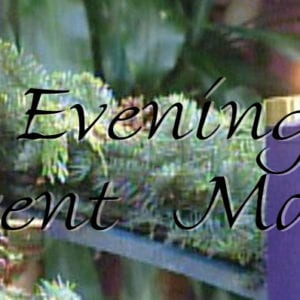 Evening Advent Masses