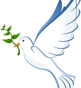 dove-peace-olive-branch